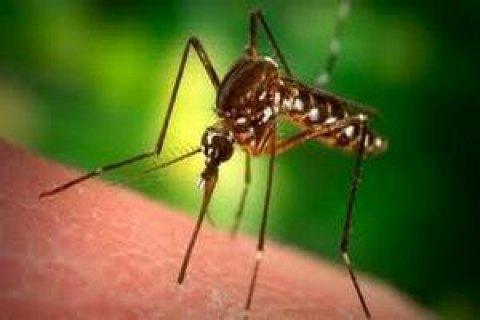 У Харкові зареєстровано завізний випадок малярії