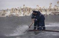 Сотрудники МЧС спасли 13 рыбаков в Каховском водохранилище
