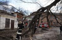 Рятувальники попередили про сильні пориви вітру на вихідних