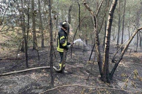 Рятувальники ліквідували лісові пожежі на Луганщині
