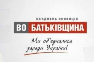 """""""Батькивщина"""" внесла в Раду 20 законопроектов"""