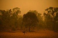 Украина готова отправить 200 спасателей в Австралию для борьбы с лесными пожарами (обновлено)