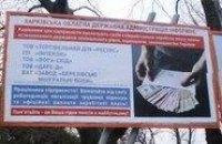 Тигипко будет искоренять зарплаты в конвертах «досками позора»