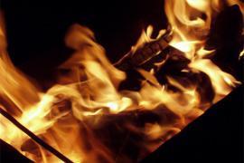 На территории Днепропетровского агроуниверситета произошел пожар