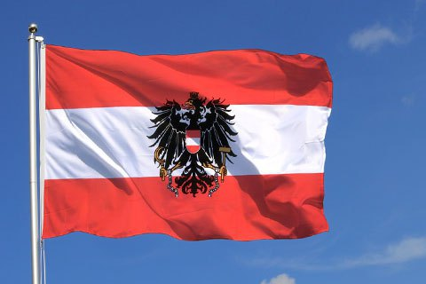 Австрийка, которая хотела попросить военной помощи Путина, получила 14 лет тюрьмы, - СМИ