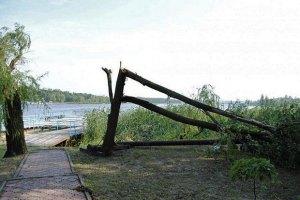 На Львовскую область обрушился ураган: есть пострадавшие