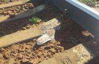 Пассажирский поезд сбил насмерть двух человек в Киеве