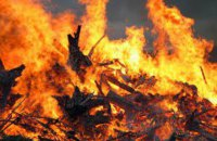 ДСНС попередила про надзвичайний рівень пожежної небезпеки у низці областей