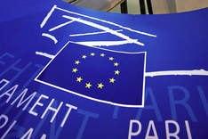 Европарламентарий призвала давить на Януковича во время Евро-2012