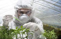 Про законопроект щодо ГМО