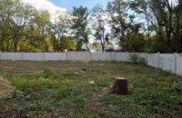 В Центральном парке Одессы вырубают деревья, чтобы построить трансформаторную подстанцию