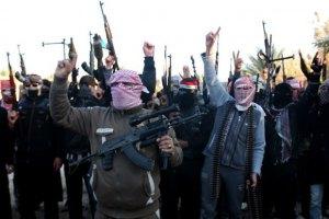 """Боевики """"Исламского государства"""" сбили сирийский военный самолет"""