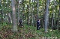 На Закарпатті знайшли чотирьох дітей, які напередодні заблукали в лісі