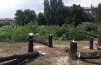 В Запорожье уничтожили сквер Яланского, спилив 500 деревьев