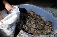 У Херсонській області затримали браконьєрів з уловом червонокнижних крабів на 89 млн гривень