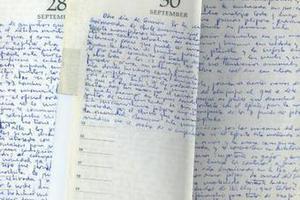 В интернет выложили дневник Че Гевары