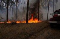 Спасатели локализовали один из очагов лесного пожара в Луганской области