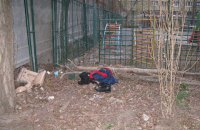ДНК Поліщука та Медведька виявлено на покинутих біля місця вбивства Бузини речах