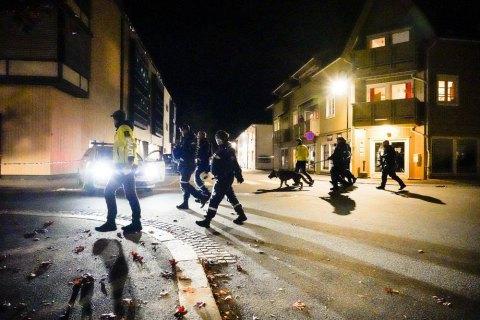 Полиция Норвегии предварительно назвала терактом нападение мужчины с луком и стрелами