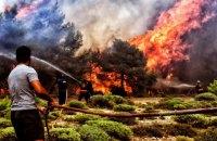 Количество жертв лесных пожаров в Греции выросло до 77 человек