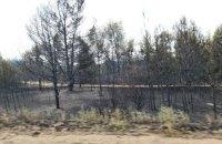 Україна отримала від бойовиків гарантії безпеки для гасіння пожеж на Луганщині, - Резніков