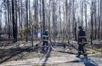 Понад 1,5 тис. осіб продовжують гасити лісові пожежі в Житомирській і Київській областях