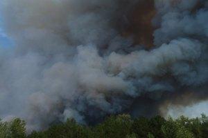 Пожар в Херсонской области локализован (Обновлено)