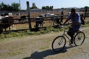 В Україні розпочався пробний сільгоспперепис