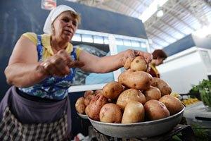 В Украине подешевела только капуста и картошка