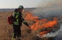 На Луганщине спасатели почти погасили пожар, который продолжается пятый день (обновлено)