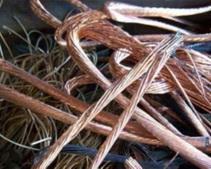 Запорожцы ограбили «Укртелеком» и «Запорожьеоблэнерго» на 100 тыс. грн
