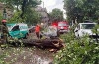 Через бурю у Львові повалені дерева, затоплені вулиці, пошкоджені дахи
