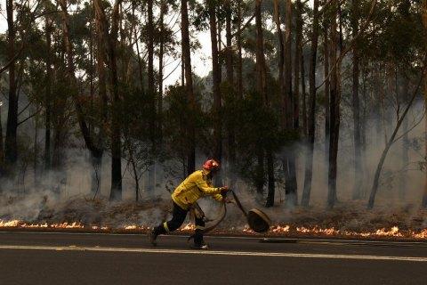Австралии потребуется около столетия для восстановления после пожаров