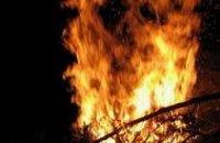МЧС Днепропетровской области в 2011 году потратит 1 млн грн на технику для тушения лесных пожаров