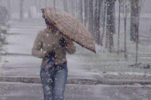 Завтра в Киеве мокрый снег с дождем, +2...+4