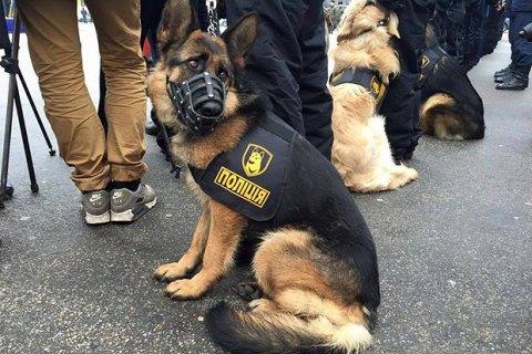 МВС рекомендує надягати на службових собак бронежилети