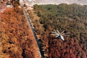 Житомирские власти хотят заселить Чернобыльскую зону
