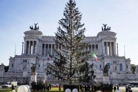 В Риме разразился скандал вокруг засохшей рождественской ели