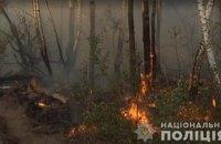 Поліція затримала жінку, підозрювану в підпалі лісу в Чорнобильській зоні
