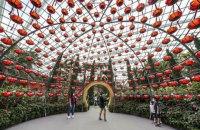 «Новая нормальность». Сингапур решил превратить коронавирус в обычный грипп