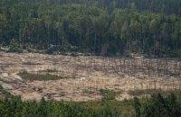Аваков пояснив причини лісових пожеж у Житомирській і Київській областях