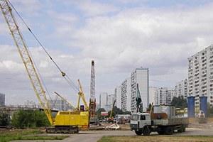 На юге Москвы газон засеяли коноплей