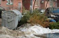 В Киеве заработали пункты приема новогодних елок для утилизации