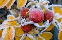 ГосЧС предупреждает о ночных заморозках