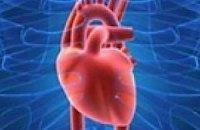 В Запорожье изобретен прибор, позволяющий ощутить «аромат сердца»
