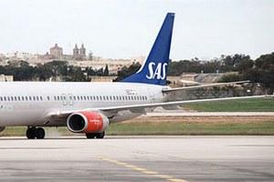 Авиакомпания отменила рейс из-за мыши в самолете