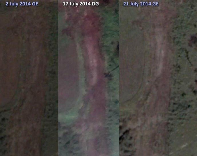 Но уже 2 июля лесопосадка была полность вырублена
