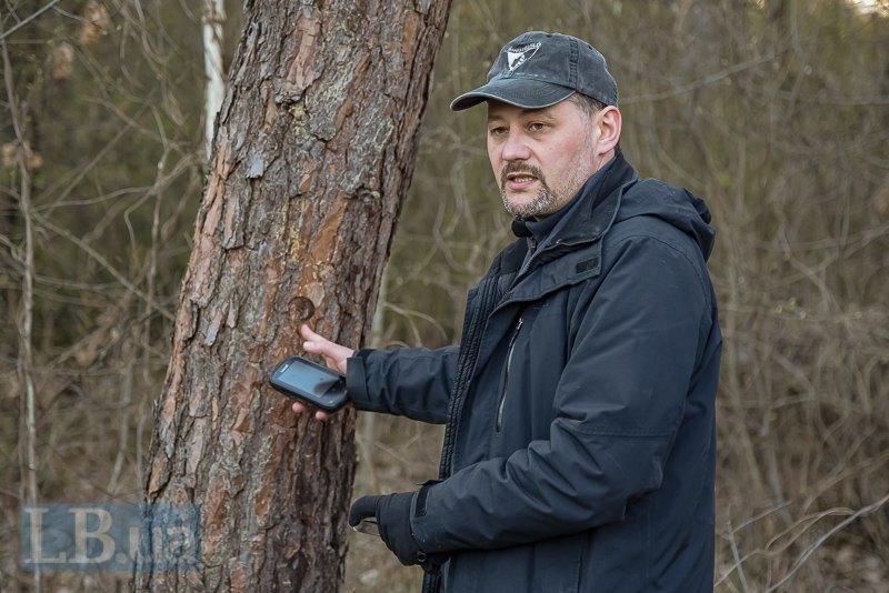 Дмитро показує клеймо на дереві - це теж позначка на дереві, що межує з вирубкою