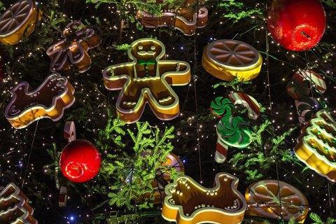 Во Франции разрешили продажу рождественских елок как предметов первой необходимости