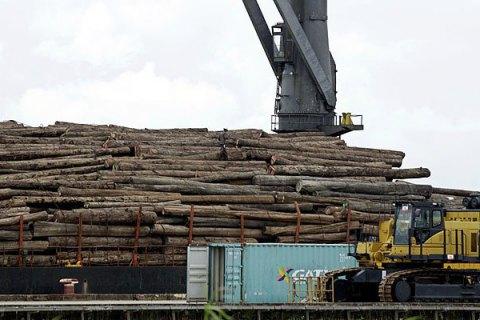 Торговля необработанной древесиной переведена на электронные аукционы, - Гончарук